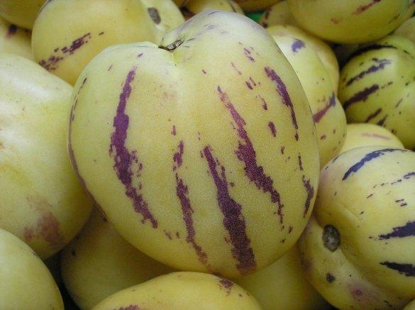 pepino-dulce