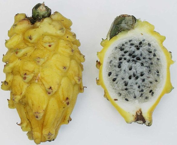 15 Latin American Fruits To Surprise Your Palate Bootsnall Travel