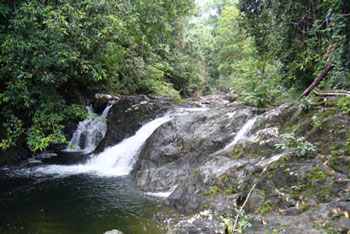 borneo-jungle-waterfall350