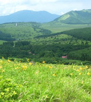 Some beautiful Kyushu countryside.