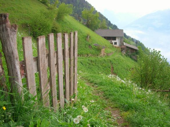 Hiking up the mountain above Dorf Tirol