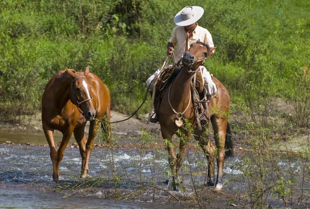SA  ranch