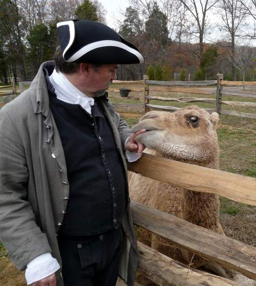 Aladdin the Camel and his colonial handler at historic Mount Vernon.