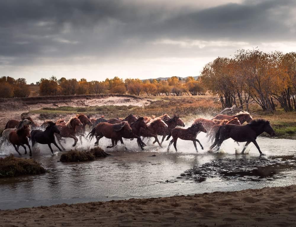 mongolia outdoors