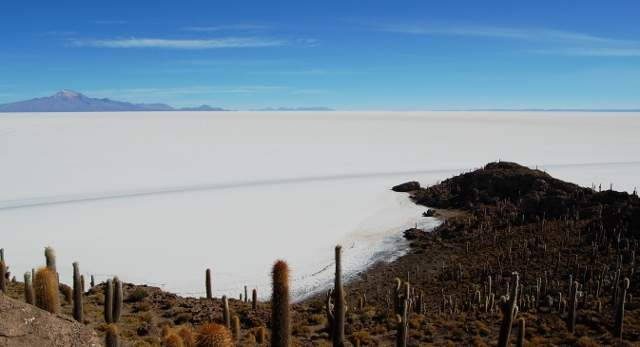 Isla del Pescado-Salar de Uyuni