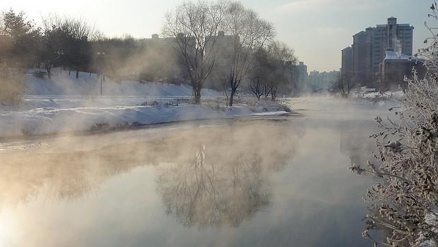 Winter in Bundang