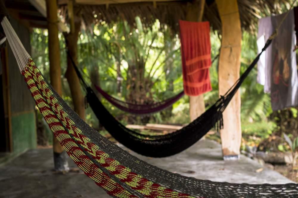 hostel hammocks