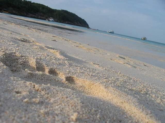 Footstep on the beach