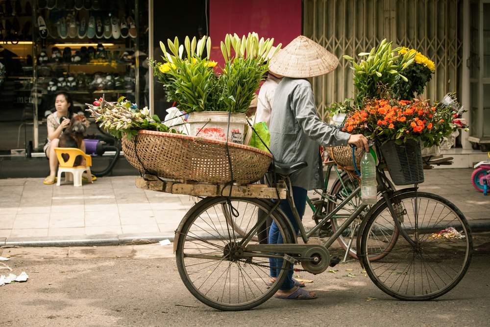 Best Vietnam