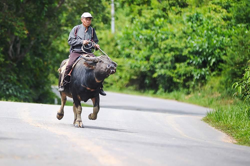 Borneo: The Off-the-Beaten-Track Road Trip