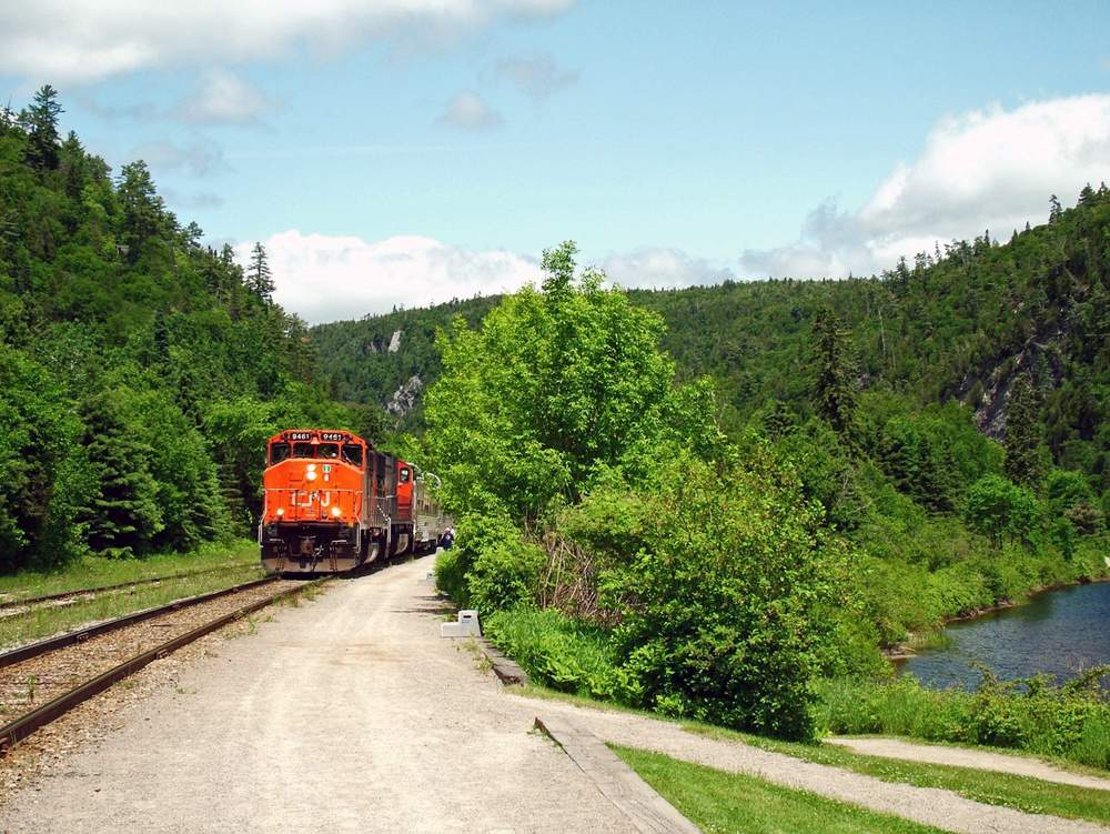 canrail forest