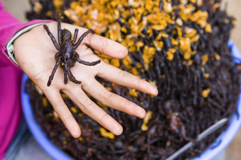 fried tarantulas, dangerous foods Cambodia