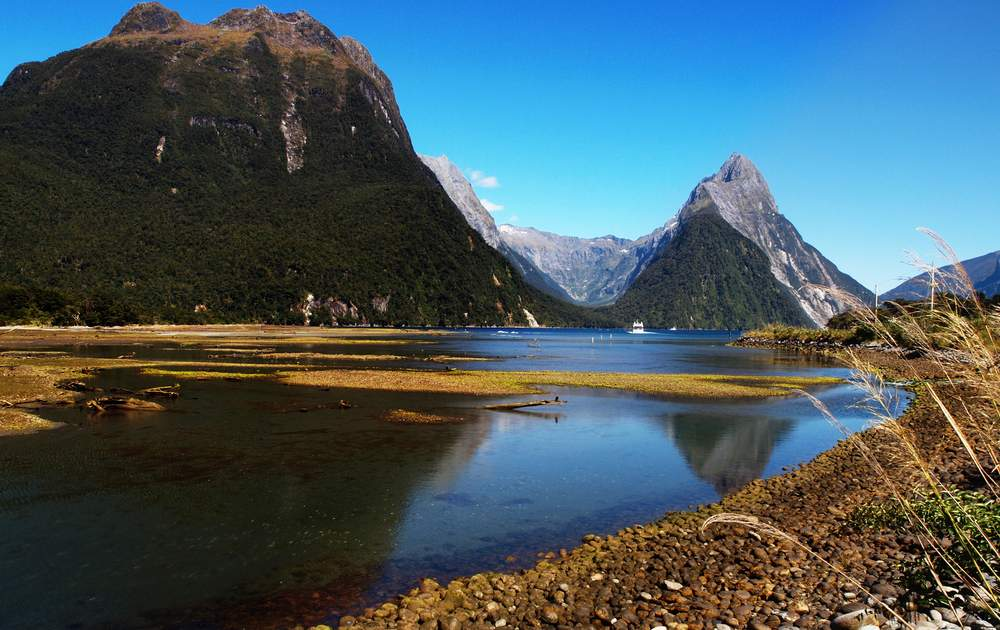 fjords in New Zealand