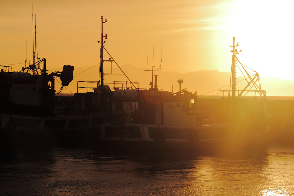 Sunrise over Harbour by Flickr Clint Mason
